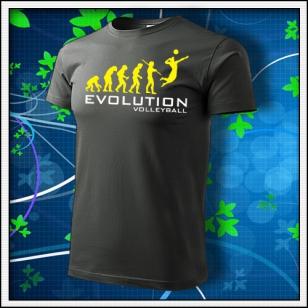 Evolution Volleyball - tmavá bridlica