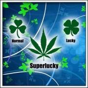 Tričko Superlucky