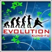 Tričko Evolution Kung-Fu
