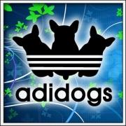 Vtipné tričká Adidogs