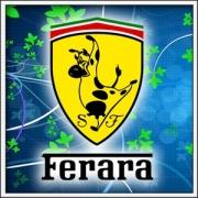 Tričko Ferara