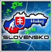Tričko Slovensko - Hokej